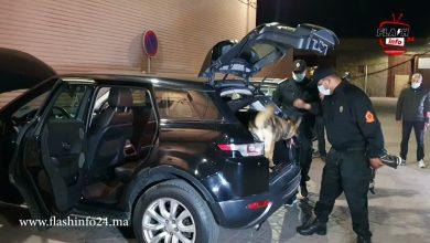 صورة شاهد لحظة تفتيش سيارة بالكلاب المدربة بعد اختراقها لحاجز أمني بمراكش