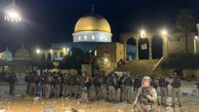 صورة أزيد من 215 إصابة خلال مواجهة فلسطينية يهودية بالقدس المحتلة.