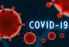 """صورة مدير """"الصحة العالمية"""" يكشف عن نتائج المراحل الأولى من التحقيق بشأن فيروس كورونا"""