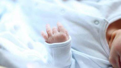 صورة فراش السيد محمود بندرويش يزدان بمولود جديد