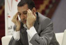 صورة سعد الدين العتماني طالع نازل